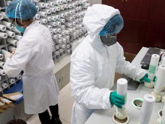 Científicos chinos Coronavirus