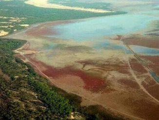 Foto aérea del Parque de Doñana