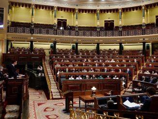 PSOE Pleno miércoles