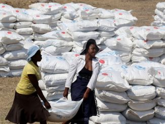 Premio Nobel de la Paz: Programa Mundial de Alimentos de la ONU