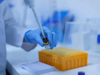 Inmunidad al Covid-19 podría durar años, según nuevo estudio