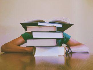 El Banco de España atribuye las tasas paro a la Educación Superior