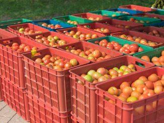 Huelga de los trabajadores del manipulado de alimentos
