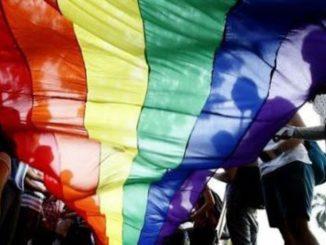 Hungría: excluye a las parejas homosexuales del derecho de adoptar