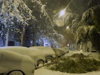 ¿Qué daños cubre el seguro en un temporal como Filomena?