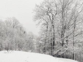 La borrasca Filomena registra récord de temperatura negativa