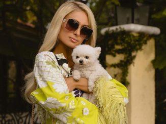 Paris Hilton en tratamiento de fecundación para ser madre de gemelos