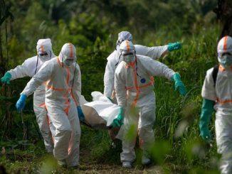 OMS ébola Congo