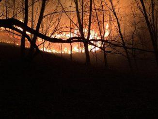 Navarra, Guipúzcoa y Francia: afectadas por un incendio forestal