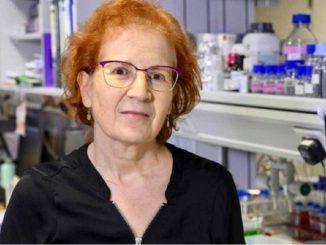 El «cambio radical» del coronavirus en España en verano
