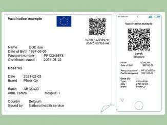 La Comisión Europea presenta el Certificado Verde Digital para verano
