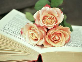 ¿Por qué se regala un libro y una rosa en la fiesta de Sant Jordi?