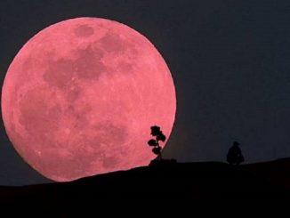La Superluna Rosa: un evento cósmico para no perderse