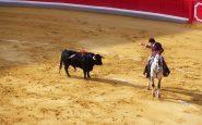 El Parlamento aprueba la vuelta de las corridas de toros en televisión