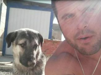 Un soldado encuentra a su perro tratado durante una misión en Irak