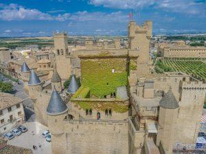 castillo olite 300x225
