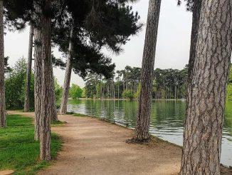 degollado en un parque de París