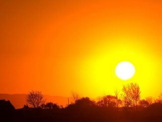 ¿Cómo prevenir los efectos de las olas de calor?