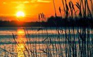 Por qué Canadá afronta temperaturas de hasta 50ºC