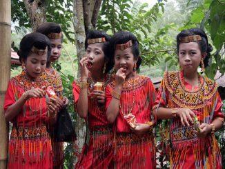 Tana Toraja: El ritual de enterrar a los niños dentro de los árboles