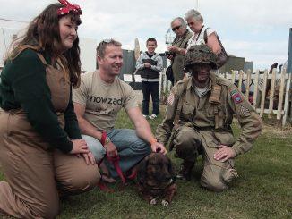 200 perros y gatos vuelan de Afganistán a Reino Unido