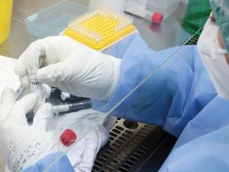 Resistente vacunas mutación E484K