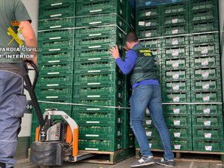 transportaban-droga-oculta-coliflores
